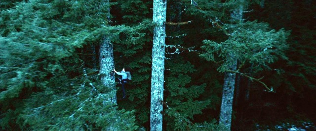TWILIGHT FILMING LOCATION Silver Falls Park Filming (6) Tree to Tree