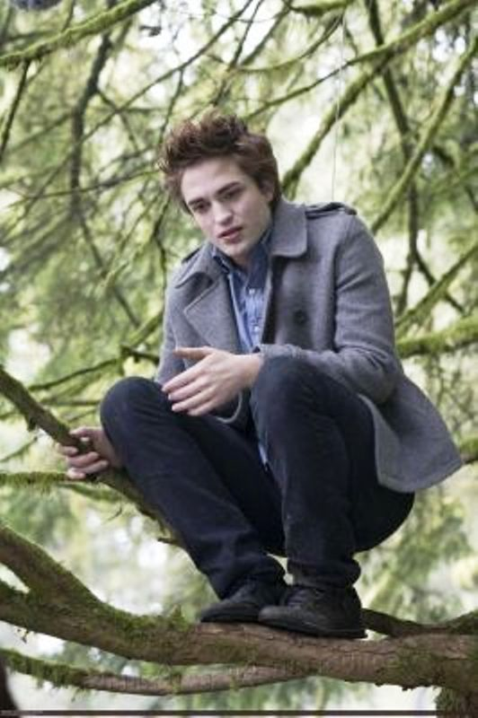 Robert Pattinson Tops List of Vampires
